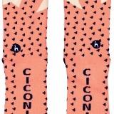 Ciconia-014 cópia_min
